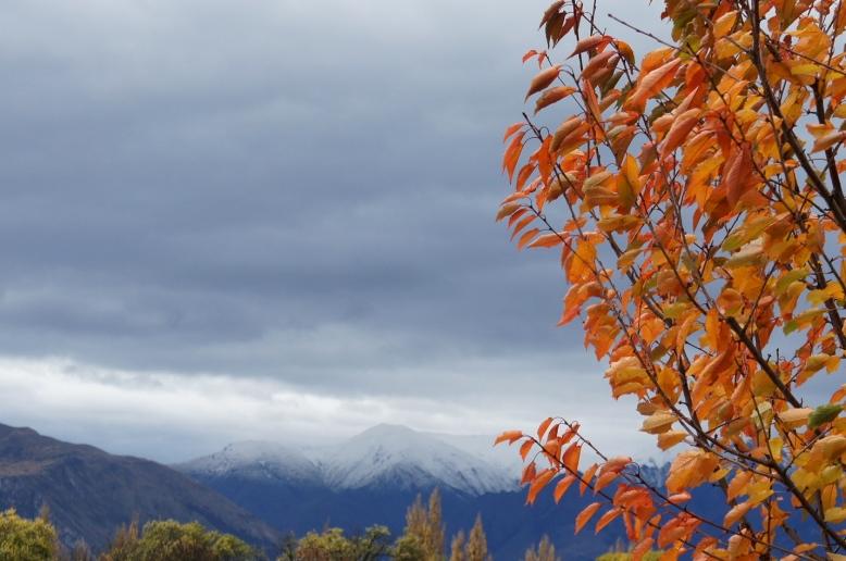 autumn wanaka snow