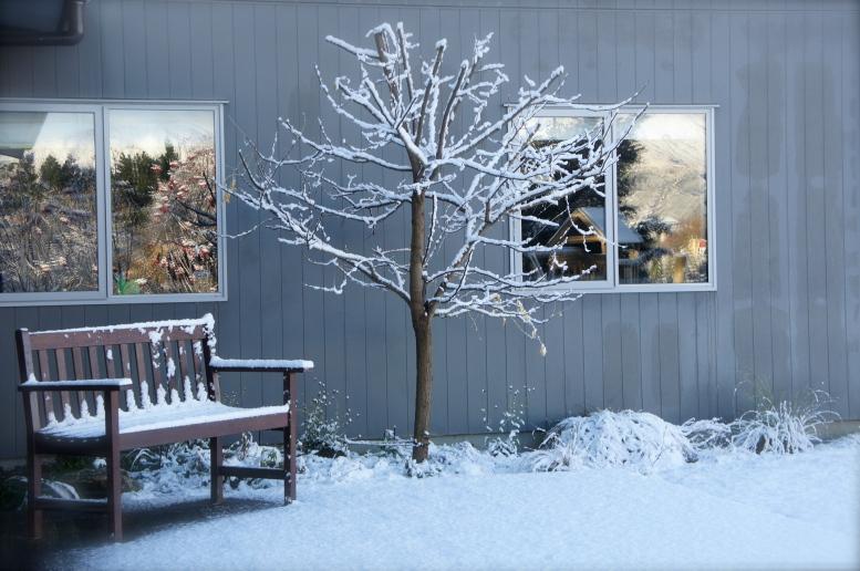 snow in wanaka
